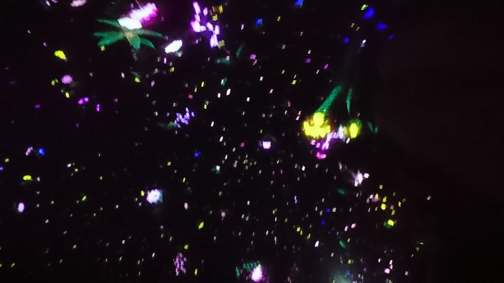 "Floating in the Falling Universe of Flowers"" at team Lab Planets in Toyosu, Tokyo"